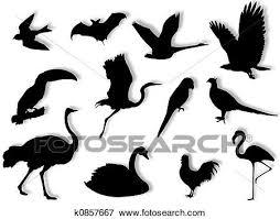 鳥 シルエット イラスト