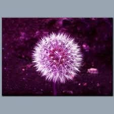 dandelion purple flower art metal plate
