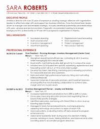 Account Manager Resume Sample Awesome Ultimate Inventory