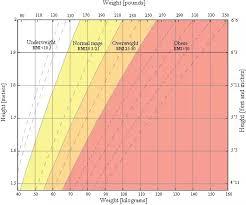 Bmi Calculator Calculate Body Mass Index For Women Men Kids