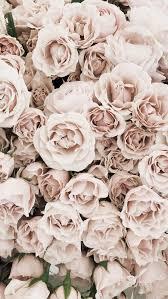 Download hd wallpapers for free on unsplash. Business Talk Rose Gold Joyfulmemoriesphotography Net Rosegold Rosegold Marble Business Flower Aesthetic Flower Backgrounds Flower Background Iphone
