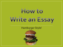 hamburger paragraph template teaching resources teachers pay   how to write an essay hamburger style