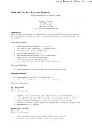resume example for skills section additional skills resume examples resume samples skills technician