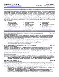 Senior Sales Executive Resume Samples Free Resume Example And