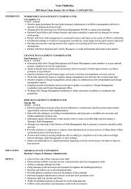 Management Coordinator Resume Samples Velvet Jobs