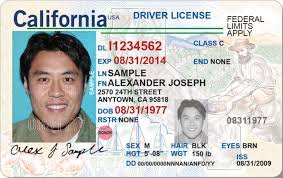 Send Not 60 'm Ab License The When Dmv Me I An Driver A Why 's Did 0t6RTT