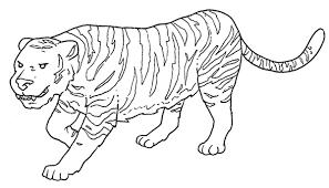 Una Tigre Semplice Disegno Da Colorare Disegni Da Colorare E