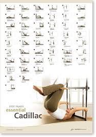 Pilates Wall Chart Buy Stott Pilates Wall Chart Essential Cadillac In Cheap