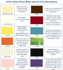 Toddler Urine Colour Chart Urine Color Chart And Meaning Urine Colour Charts