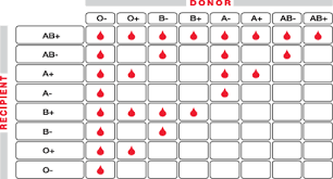 Blood Type Chart Donor And Recipient Blood Type And Donor Chart