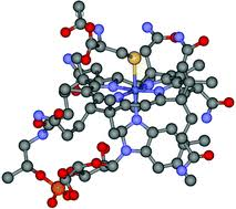 A <b>simple</b>, <b>convenient</b> method to synthesize cobalamins: synthesis of ...