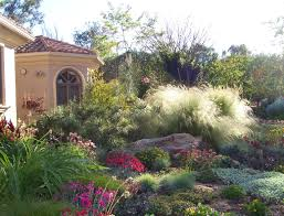 Drought tolerant landscaping ideas begin with planning like every other  landscape design. Drought is a period of time with insufficient rainfall