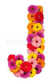 letter j flower alphabet isolated on white background stock photo