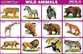 wild animals chart.  Animals Wild Animals Chart To N