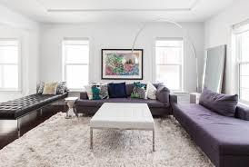 white area rug living room. Small Living Room Friendly Sofa Decor White Area Rugs Costco Fluffy Shag Rug Plush Interior Pictu FitYap