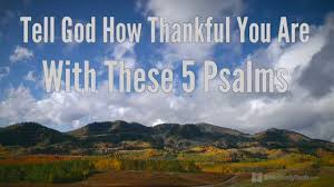 34 Thanksgiving Quotes To Inspire Giving Gratitude