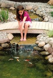 Diy Pond Best 25 Small Backyard Ponds Ideas On Pinterest Small Garden
