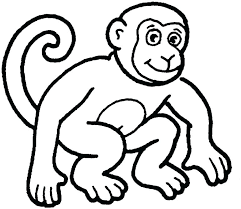 Zoo Animal Coloring Pages For Preschool Cremzempme