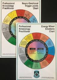 Kinesiology Emotion Chart Pkp Neuro Emotional Points Chart With Energy Wheel Emotions Chart
