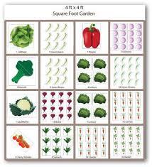 sample square foot garden plan