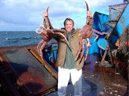 King Crab Pot Design An Arlington Companys Crab Pots Star On Deadliest Catch