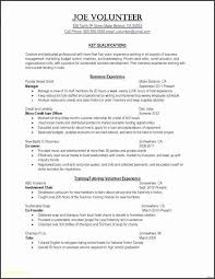 Sample Resume Microsoft Word Mesmerizing Resumes On Microsoft Word Beautiful Business Rules Template Word New