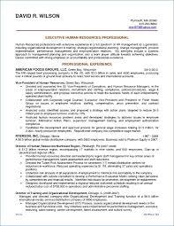 Resume Objective Sample Statements Best of Resume Goal Statement Igniteresumes