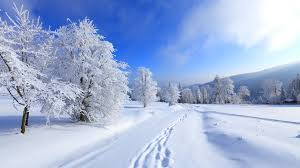 winter background images hd. Simple Winter Winter Background HD Intended Background Images Hd E
