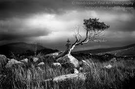 barry hendrickson Archives - Hendrickson Fine Art Photo - Irish ...