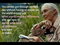 Jane Goodall Quotes Mesmerizing Jane Goodall Quotes Luxury 48 Best Quotes Images On Pinterest