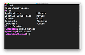 How To Create A Directory Create Your First Directory Learn The Command Line In Terminal