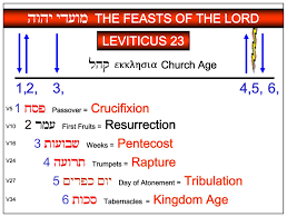 Leviticus Worksheet Printable Worksheets And Activities