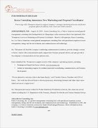 It Consulting Proposal Template Consultant Proposal Sample Mycareukco 14