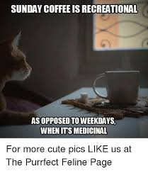 The first algorithmic coffee meme on this list. 25 Best Memes About Sunday Coffee Sunday Coffee Memes