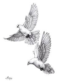 Dovepigeonsketch голуби идеи для татуировок татуировка