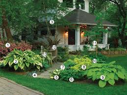 Small Picture 44 best My shade garden images on Pinterest Shade plants