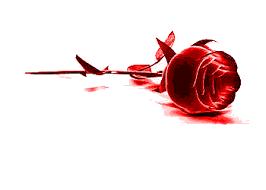 Bildergebnis für gifs kostenlos rose