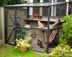cat house plans home fice modern pet outdoor model diy tree ways your can enjoy the