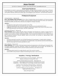 New Rn Resume Examples Employment Certificate Sample For Clinic Nurse New New Grad Nurse 16