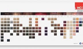 16 Exhaustive Igora Viviance Color Chart