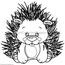 Small Picture Cute Baby Porcupine Animal Coloring Pages GetColoringPagesorg