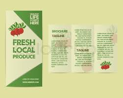 flyer companies summer farm fresh flyer template or brochure design with radish and
