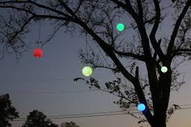lighting outdoor trees. Colorful Light Globes, Temporary Outdoor Lighting Trees