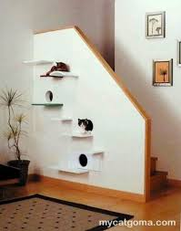 Corner Cat Shelves Best Cat Wall Floating Shelves Morespoons A32ba32d32