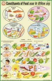 Constituents Of Food For Health Hygiene Chart