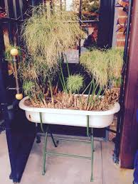 vintage baby bathtub planter ideas