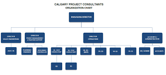 Document Organization Chart Organization Chart