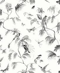Paradijs Van Vogels Behang Zwart Wit De Felle Vogels Vliegen