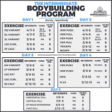 Bodybuilding Exercises Chart Free Download The Intermediate Bodybuilding Program Rippedbody Com