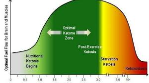 Optimal Ketosis Chart The Ultimate Guide To The Ketogenic Diet Lose Weight Plus